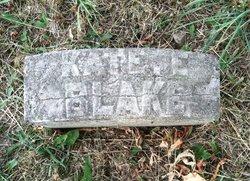 Kate E. <I>Power</I> Blake