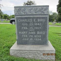 Mary Ann <I>Stevensen</I> Bird