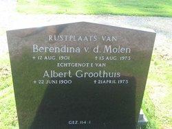 Berendina van der Molen