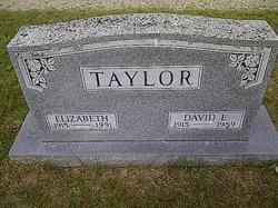 David Edward Taylor