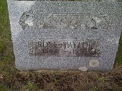 Rose Taylor