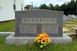 Fannie <I>Langston</I> Anderson