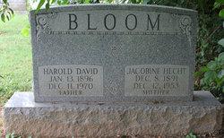 Mrs Jacobine <I>Hecht</I> Bloom