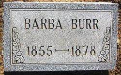 Barba Burr