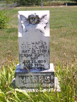 James L Mapes