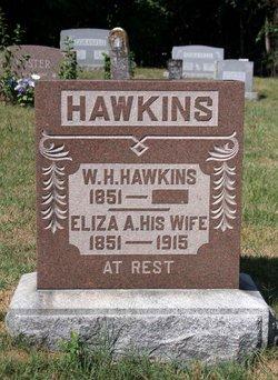 Eliza Ann <I>Strange</I> Hawkins
