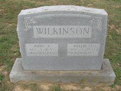 """Ellen Julia """"Nellie"""" <I>Reeves</I> Wilkinson"""