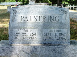 William Palstring