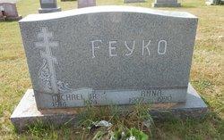Michael Feyko, Jr