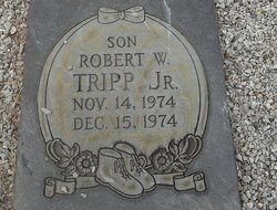 Robert Wayne Tripp, Jr
