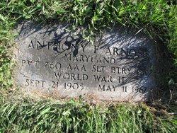 Anthony F. Arnone