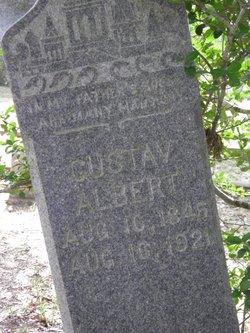 Gustav Albert