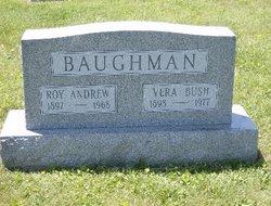 Vera Ellen <I>Bush</I> Baughman
