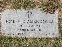 Joseph D Amendolia