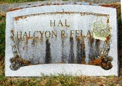 """Halcyon R """"Hal"""" <I>Raney</I> Feland"""