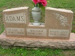 Mary Ann <I>Hitchins</I> Adams