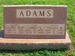 Lillian M Adams