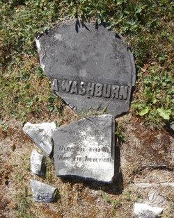 Abra <I>Washburn</I> Condon