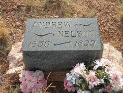 Andrew Nelson