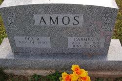 Rex R Amos