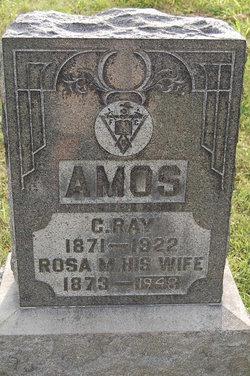 """Rosa M """"Rosie"""" <I>Prickett</I> Amos"""