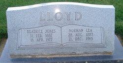 Annie Beatrice <I>Jones</I> Lloyd