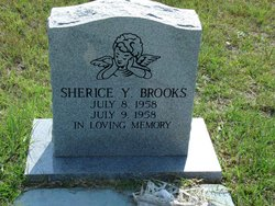 Sherice Y Brooks