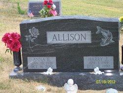 Anna E Allison