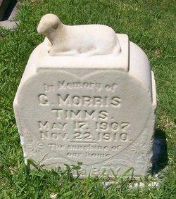George Morris Timms