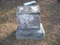 William Hardy Stephens