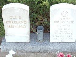 Ole S Birkeland
