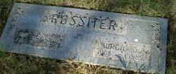 Virgil Douglas Rossiter