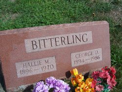 George D Bitterling