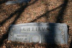 Elisha A Williams