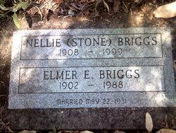 Nellie <I>Stone</I> Briggs