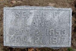 Sophie Fisher <I>Stout</I> Lane