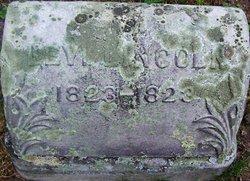 Levi Lincoln Thayer