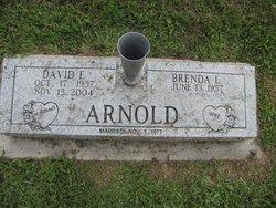 David E Arnold