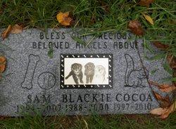Blackie ,