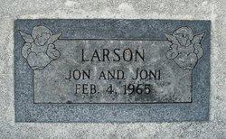 Joni Larson