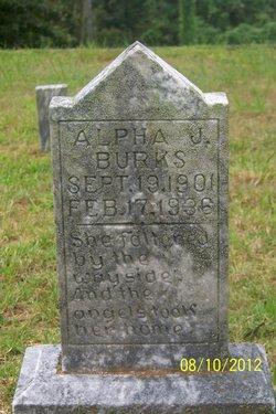 Alpha J. Burks