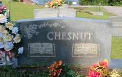 James Arthur Chesnut