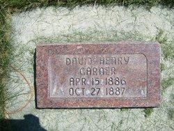 David Henry Garner
