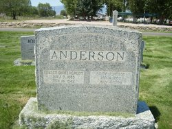 Nelson W Anderson