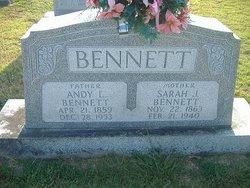 Andy L Bennett