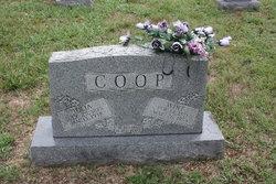 Julia Ann <I>Hood</I> Coop