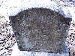 Mary Virginia Andrews