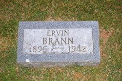 Ervin Brann