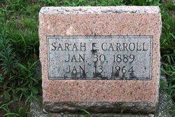 Sarah Ellen <I>Sayer</I> Carroll