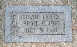 Wayne Elvin Lewis